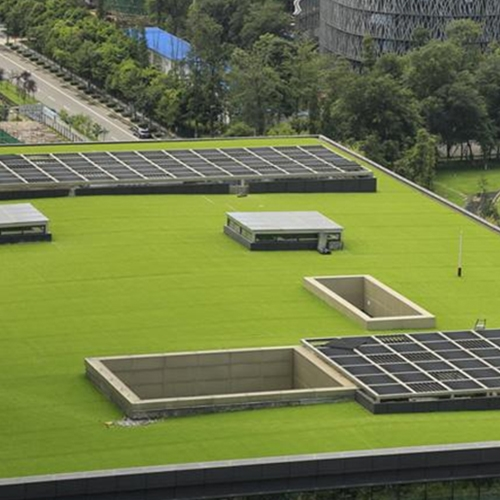 贵州屋顶绿化